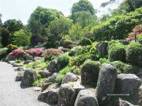 Dry Rock Gardens. Christchurch Botanical Gardens. South ...