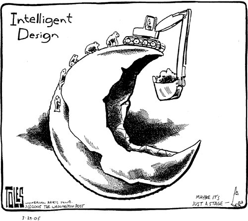 Pax on both houses: Tom Toles' Cartoon: Intelligent Design