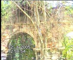 >>Tinggalan Istana Raja Bersiong