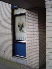 hond voor het raam3