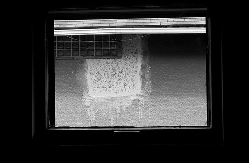 Window 4445