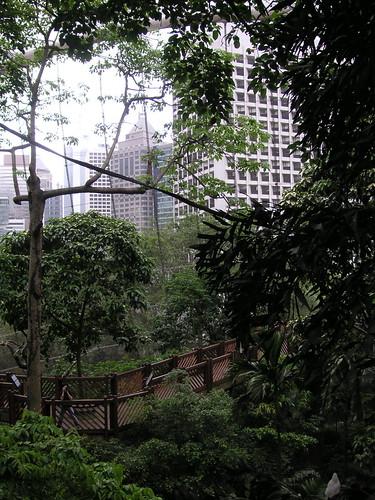 Hong Kong Park Aviary