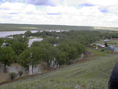 Flood from Irrigation level