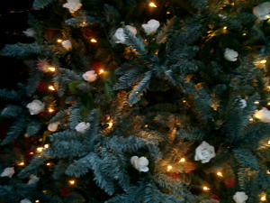 en zo ziet onze boom er dit jaar uit: groen met witte roosjes.