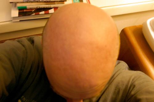 Bird's View of Bald Guy