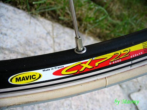 MAVIC CXP22车圈与DT辐条
