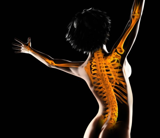human-bones-Incredible-Human-Body-Facts-You-Probably-Didnt-Know