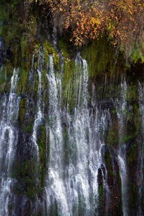 A-Section-of-Burney-Falls