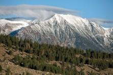 Morning-Mountain-Two
