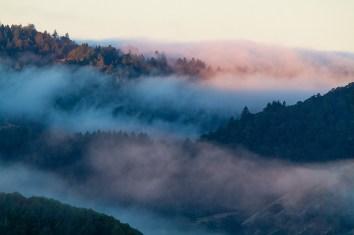 Sunrise-Fogbank