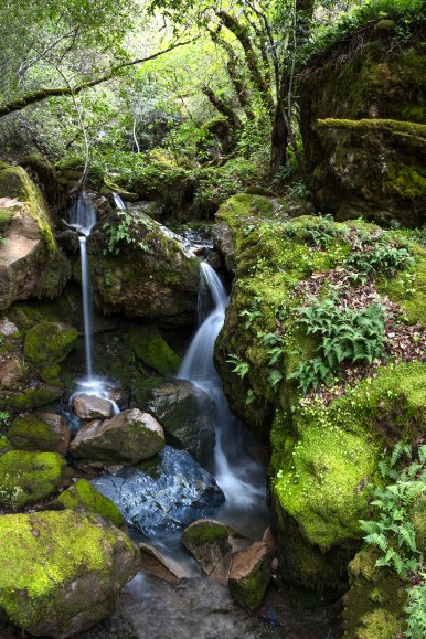 Waterfall Near Geysers Road