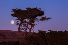 Coastal-Moon-at-Sunset