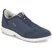 Xαμηλά Sneakers Geox NEBULA C