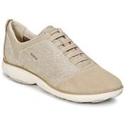 Xαμηλά Sneakers Geox D NEBULA G