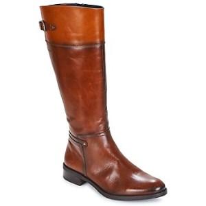 Μπότες για την πόλη Dorking TIERRA ΣΤΕΛΕΧΟΣ: Δέρμα & ΕΠΕΝΔΥΣΗ: Συνθετικό & ΕΣ. ΣΟΛΑ: Συνθετικό & ΕΞ. ΣΟΛΑ: Καουτσούκ