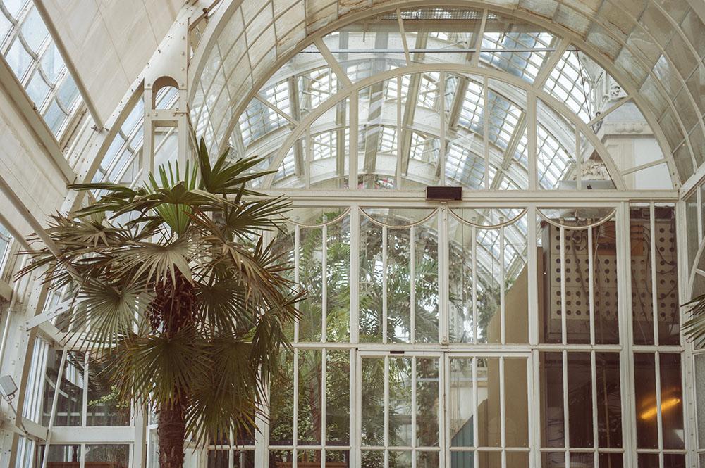 vienna, open house vienna, palmenhaus