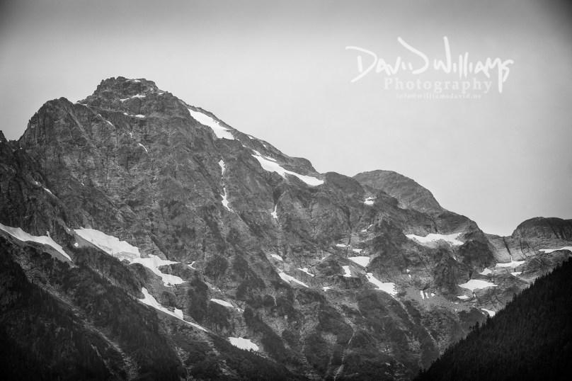 David Williams Photography