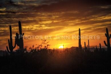 Arizona Sunset - Image 2