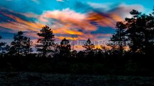 Arizona Sunset - Image 9
