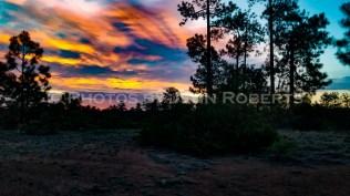 Arizona Sunset - Image 10