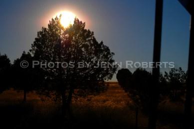 Arizona Sunrise - Image 3