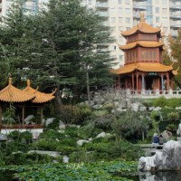 City Sanctuary