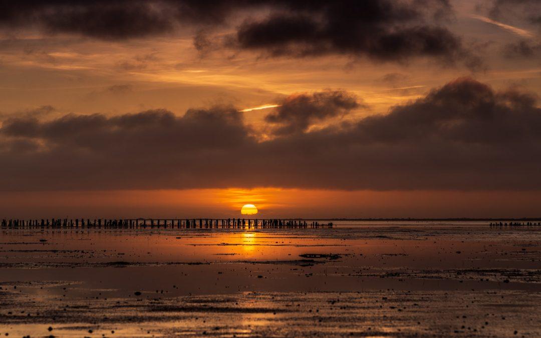 Vinder Nationalpark Vadehavet fotokonkurrence