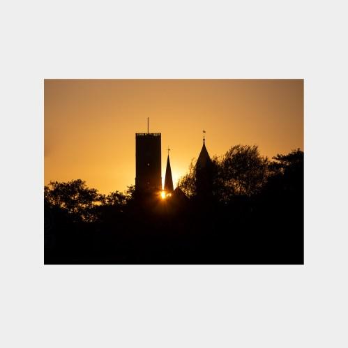 Ribe Domkirke i morgenlys