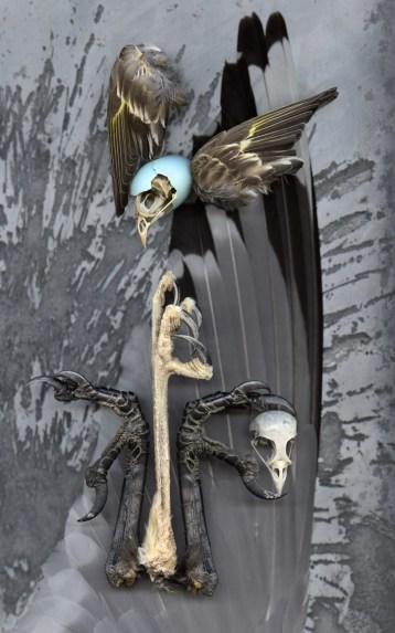 Totem Birds · 2013 · 21 x 33 in.