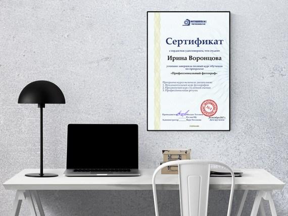 сертификат профессионального фотографа