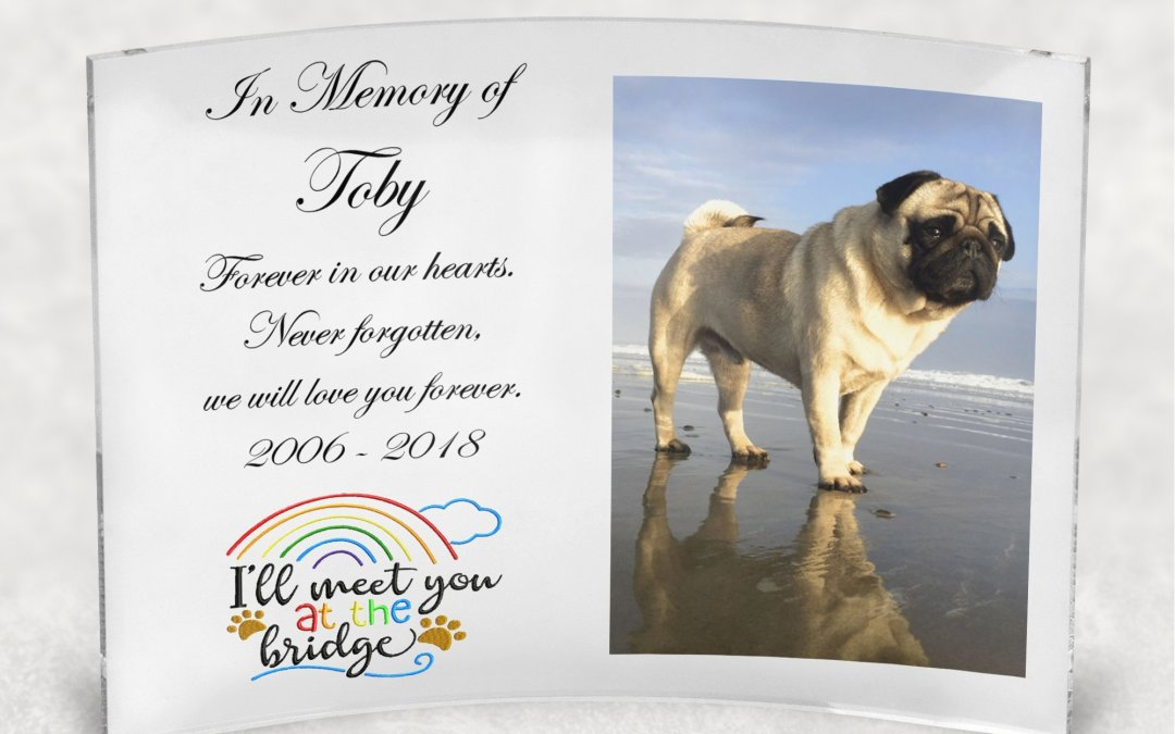 Rainbow Bridge Pet Memorial Pet Loss Gift, Custom Clear Curved Photo Panel