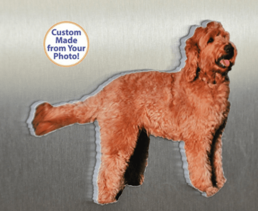 Pet Fridge Magnets Photo Gifts