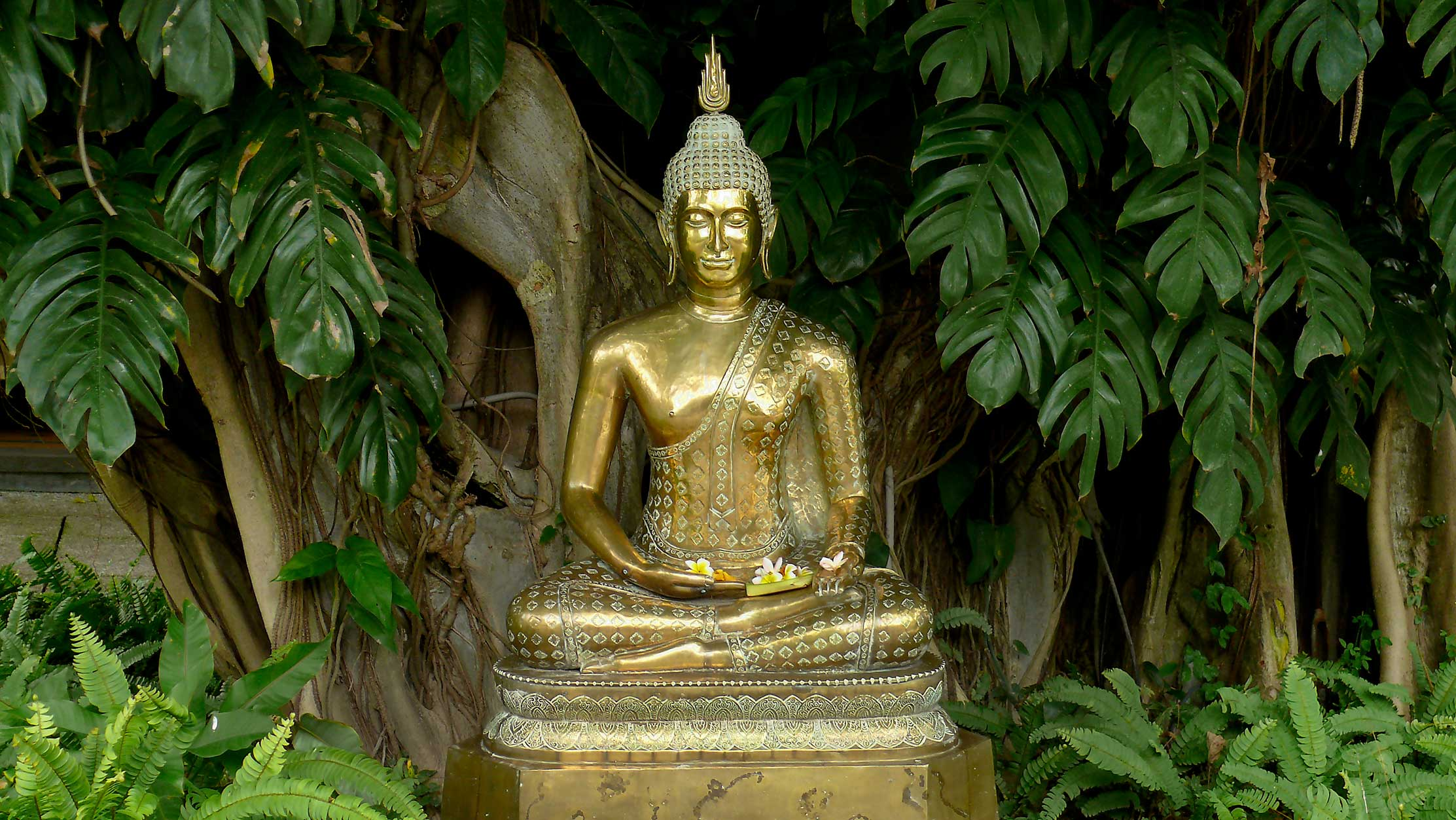 Lord Buddha Animated Wallpapers Bali Photos Hd Page 2