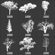 brushes tree