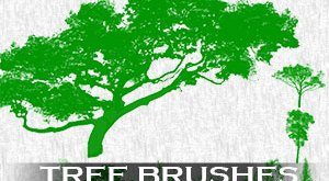 Tree Brushses