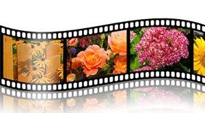 Membuat Pita Film menggunakan Adobe Photoshop