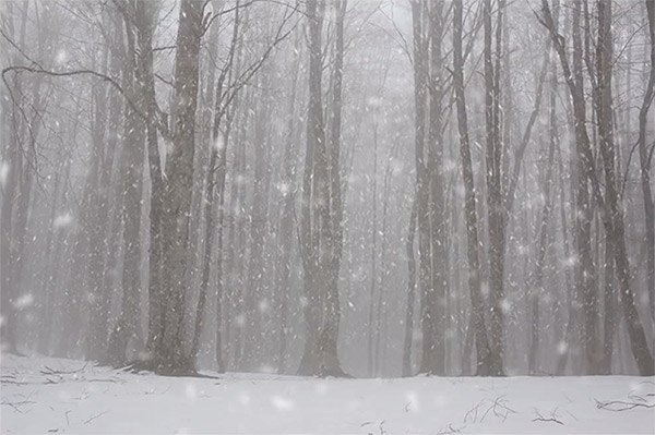 Add a realistic snowfall to a photo in Photoshop