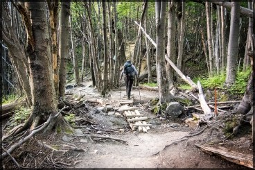 The road to Cuermos