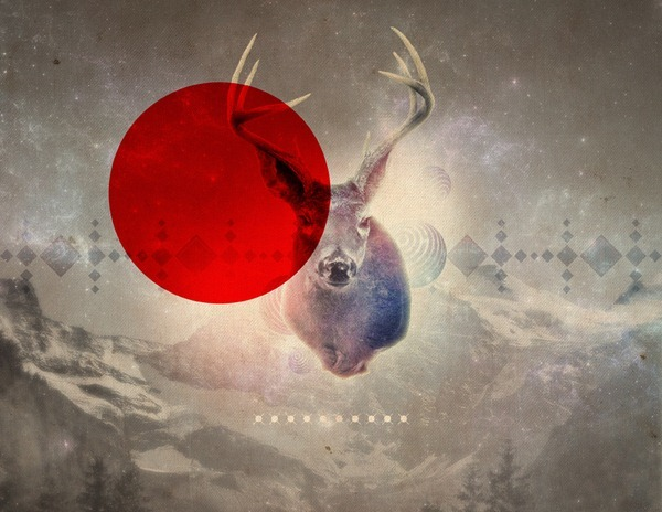 Deer_Nature[4]