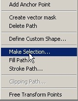 make_selection_pen_tool