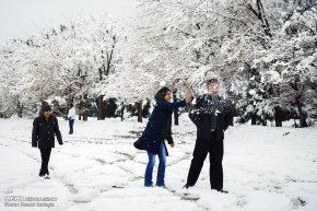Iran, Kerman Province, Kerman City Winter Snow Snowball 05