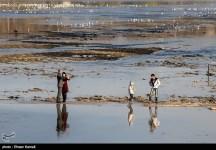 Zayanderud River in Iran's Isfahan Province 08
