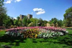 Alborz, Iran - Karaj, Chamran's Park Flower Garden 6