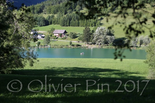 PIN_6422 web1600