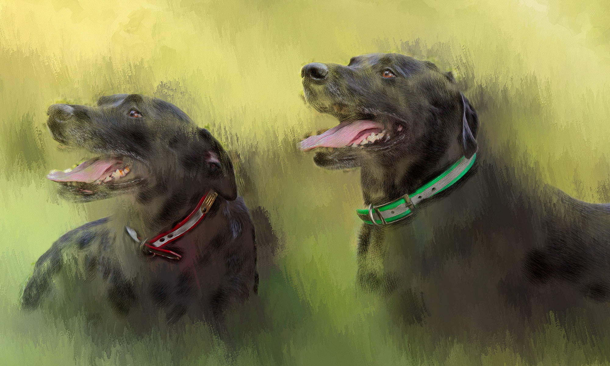 Original paintings from your photos of your pets