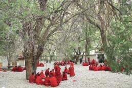 Pratique du débat de boudhiste tibétain - Monastère de Sera - Lhassa - Tibet