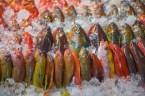 Marché de poissons - Kenting - Taiwan.