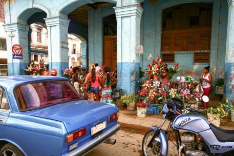 Blumenhandel in Kuba, Havanna. November 2015 // Flower shop in Havanna, Cuba. November 2015