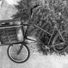BMX Fahrrad in Tel Aviv // BMX bicycle in Tel Aviv