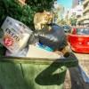 Katze auf einem Müllcontainer // Cat on a garbage container